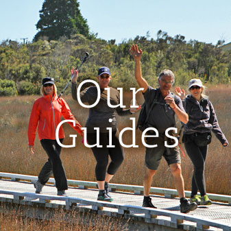 Our Guides